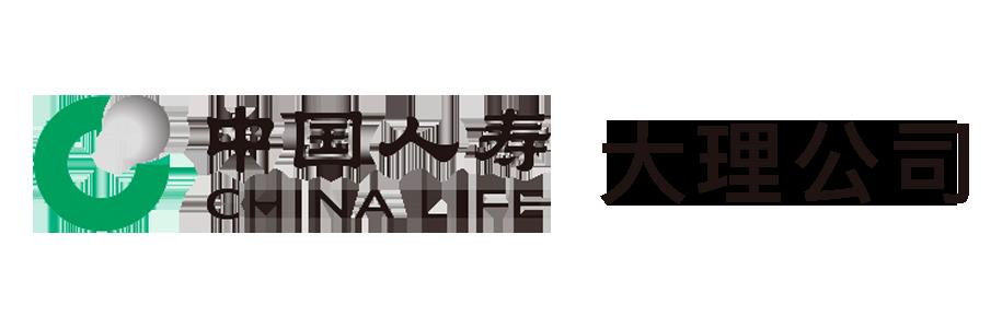 中国人寿大理公司